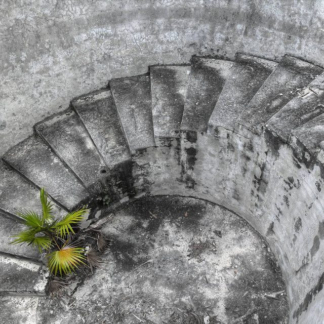 An ancient winding staircase with beautiful splash of green architecturehellip
